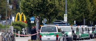 Atirador chamava-se Ali David Sonboly e planeou uma autêntica emboscada