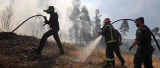 Incêndios: Fogo em Cabril dominado após 15 horas a arder