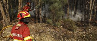 Homem de 81 anos preso por atear fogo em Vila Pouca de Aguiar