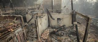 Incêndios: Payshop e Cruz Vermelha juntas para recolher donativos
