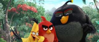 Está a caminho um novo filme de 'Angry Birds'