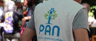 São Miguel: PAN quer apostar em novo paradigma para fazer política