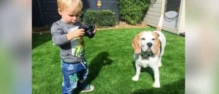 Bebé de 19 meses recebeu máquina fotográfica e fez... magia
