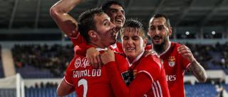 Benfica-Paços de Ferreira: Eliseu está de regresso ao 'onze'