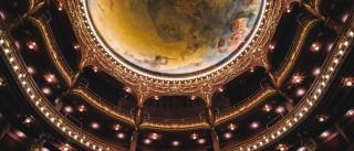 Teatro Nacional São João preside nova associação de artes performativas