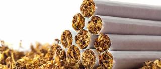 """Associações """"seriamente preocupadas"""" com destino da lei sobre tabaco"""