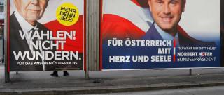 Áustria: Tudo aponta para derrota da extrema-direita nas presidenciais