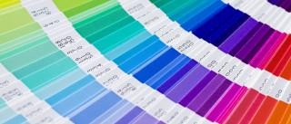 Pantone já elegeu a cor do ano 2017
