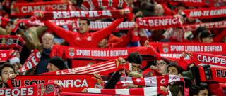 Benfica admite interditar Estádio da Luz a jogos da seleção