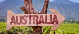 Animal mais perigoso da Austrália levou 12 mil ao hospital em 13 anos