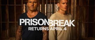 Algumas coisas que talvez não saiba sobre 'Prison Break'