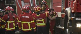 Bombeiros dão como dominado fogo em perímetro florestal de Águeda