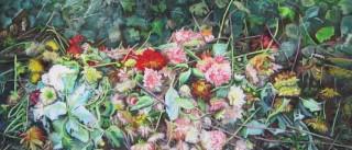 Artista holandesa expõe desenhos em palácio de Estremoz