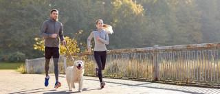 Nove dicas para correr com o seu cão