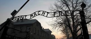 Despem-se e acorrentam-se em frente ao campo de Auschwitz