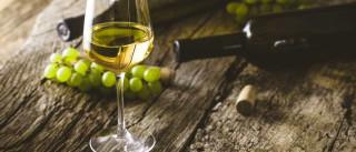 Beber vinho branco eleva risco de desenvolver doença de pele