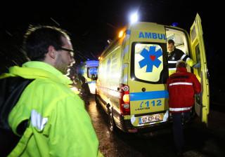 Menino de dois anos mordido no rosto por um cão em Lisboa