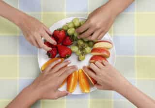 O consumo de fruta pode ter contribuído para a formação do cérebro humano