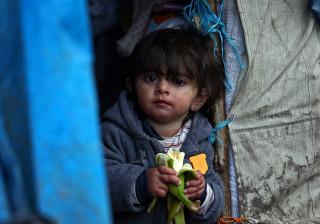 Unicef pede proteção para crianças que ainda estão em Calais