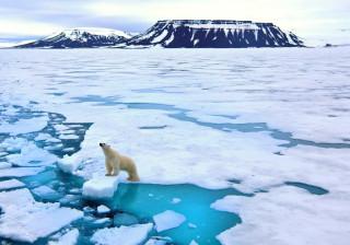 Gelo nos polos recua para mínimos recorde