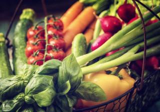 """Alunos gerem horta universitária que nasceu de uma """"conversa de cozinha"""""""