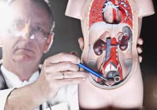 Sabe reconhecer os sinais do cancro na bexiga? 'Não feche os olhos'