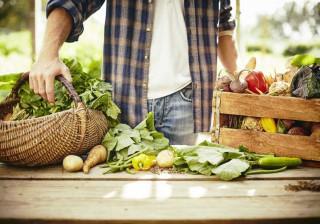 Como ter um estilo de vida mais sustentável em nove passos