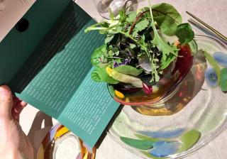 Mais de 50 ingredientes e um preço de luxo: Não há salada como esta