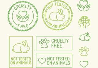 'Beleza sem coelhinhos'. A cosmética que não é testada em animais