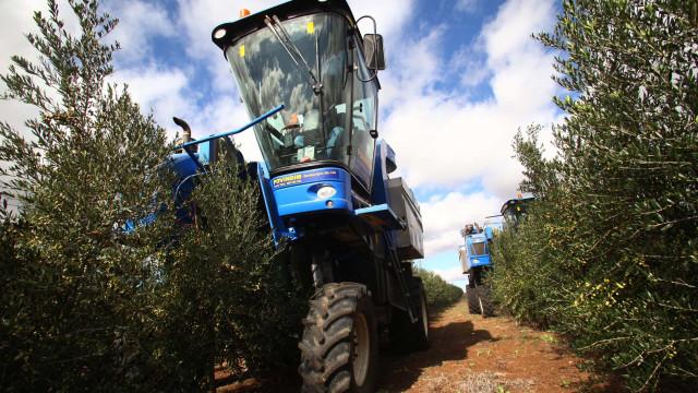 CDS exige resolução de problemas ambientais de três fábricas no Alentejo