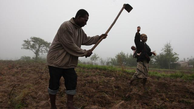 Setor não petrolífero vai liderar crescimento económico em Angola