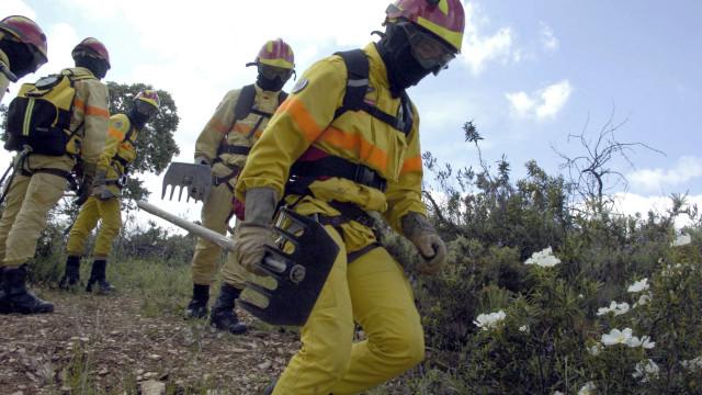 Força Especial de Bombeiros já não vai ajudar a combater fogos na Grécia