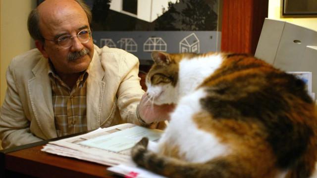 Jornadas celebram 75 anos de Manuel António Pina