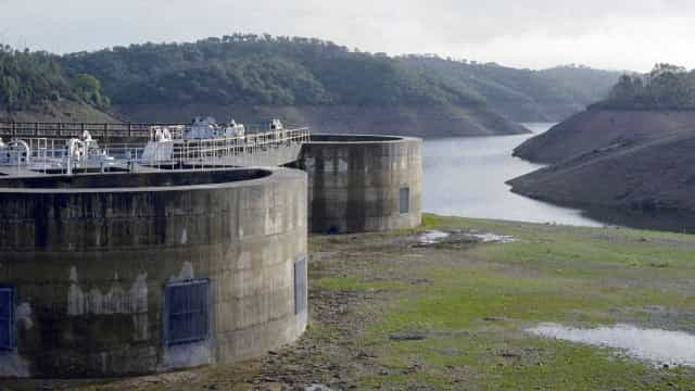 Governo decide retirar 150 toneladas de peixe de quatro barragens