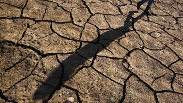 Um milhão de angolanos afetados pela seca no sul do país
