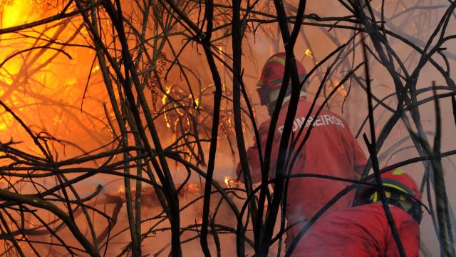 Hospital da Luz alvo de evacuação devido a incêndio em Setúbal