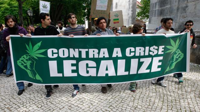 Parlamento discute hoje legalização da canábis para fins recreativos