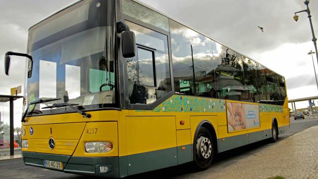 Quinze novos autocarros das Carris começam a circular na sexta-feira