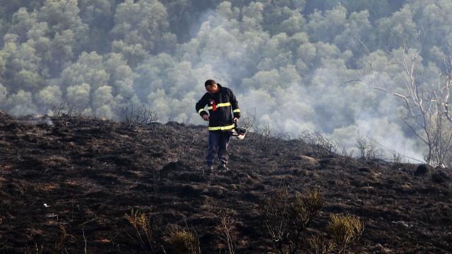 Compre uma fotografia e ajude os bombeiros de Castanheira de Pera