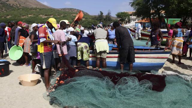 Autoridades cabo-verdianas alertam para risco de peixe venenoso