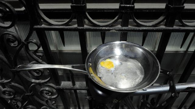 Consumo de ovos pode reduzir risco de doenças cardiovasculares