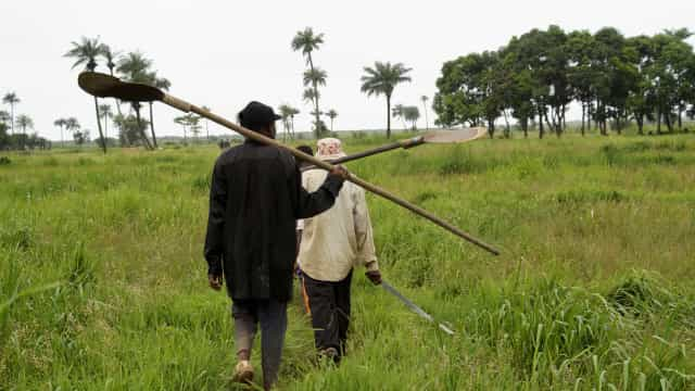 Japão poderá fornecer a Angola tecnologia de ponta para fins agrícolas