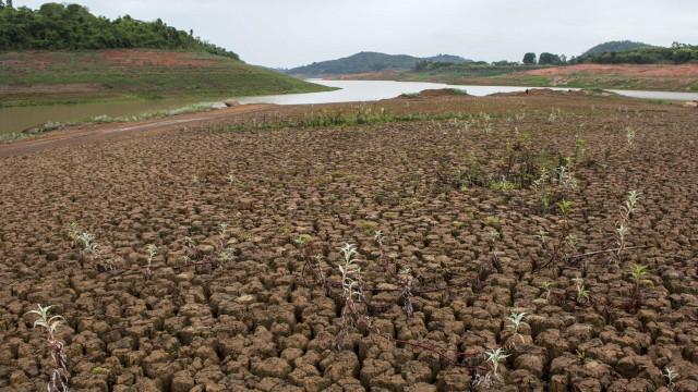 Solos podem deixar de absorver para passar a emitir dióxido de carbono