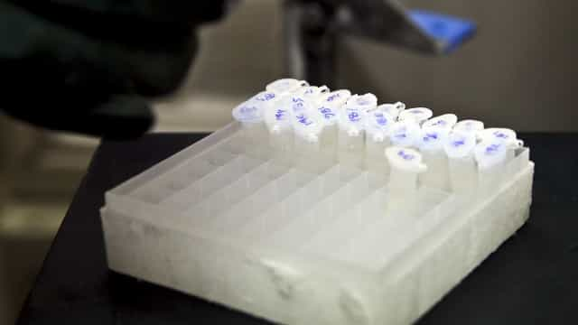 """Legionella no Centro de Saúde de Mangualde, que mantém """"atividade normal"""""""