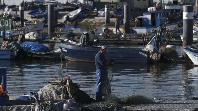 Pescadores vão receber meio milhão de euros para abandonar atividade