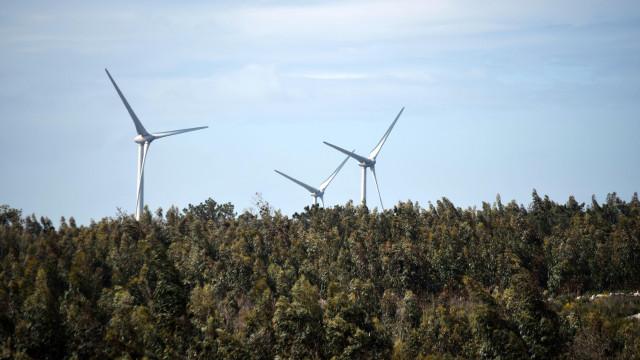 Emissões de CO2 reduzidas em 6 milhões de toneladas graças às renováveis