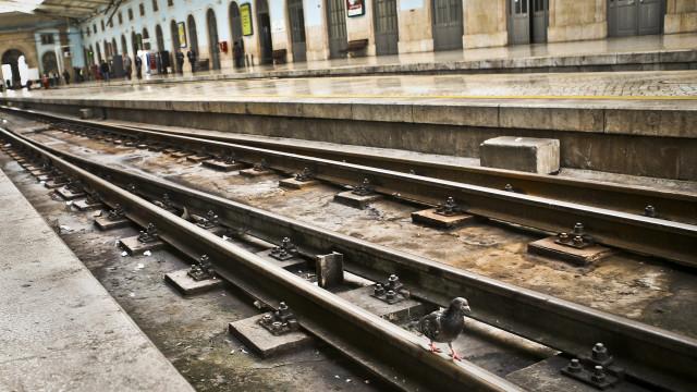 Uma pessoa morre após ser colhida por comboio no Seixal