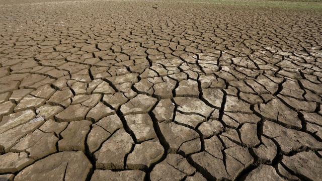 Dezembro de 2018 foi quente e situação de seca regressa a sul do Tejo