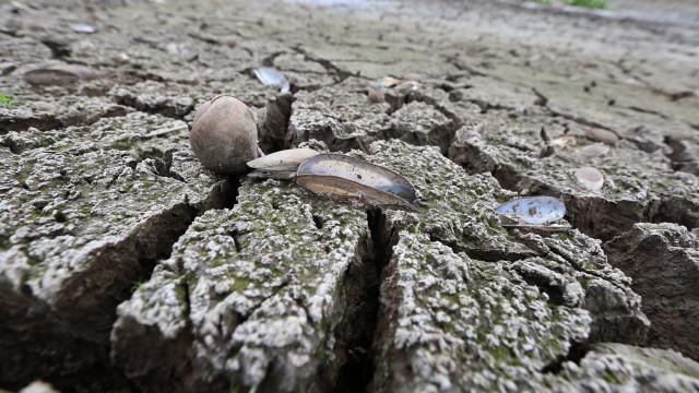 Angola cada vez mais afetada pelas alterações climáticas
