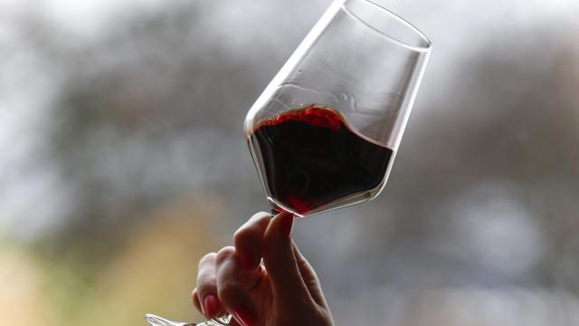 Produção de vinho deve recuar 3% entre 2018/2019